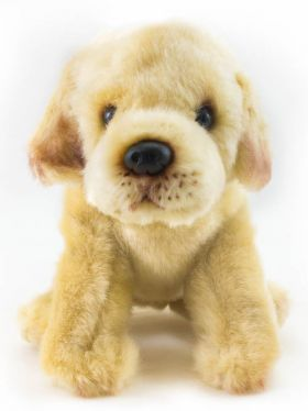 Nat & Jules - Plush Yellow Labrador