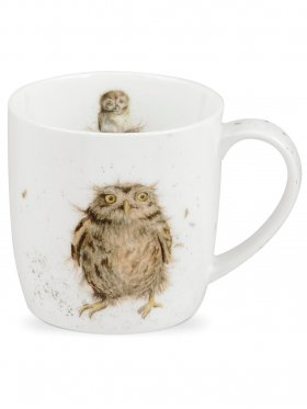 Royal Worcester What A Hoot (Owl) Mug